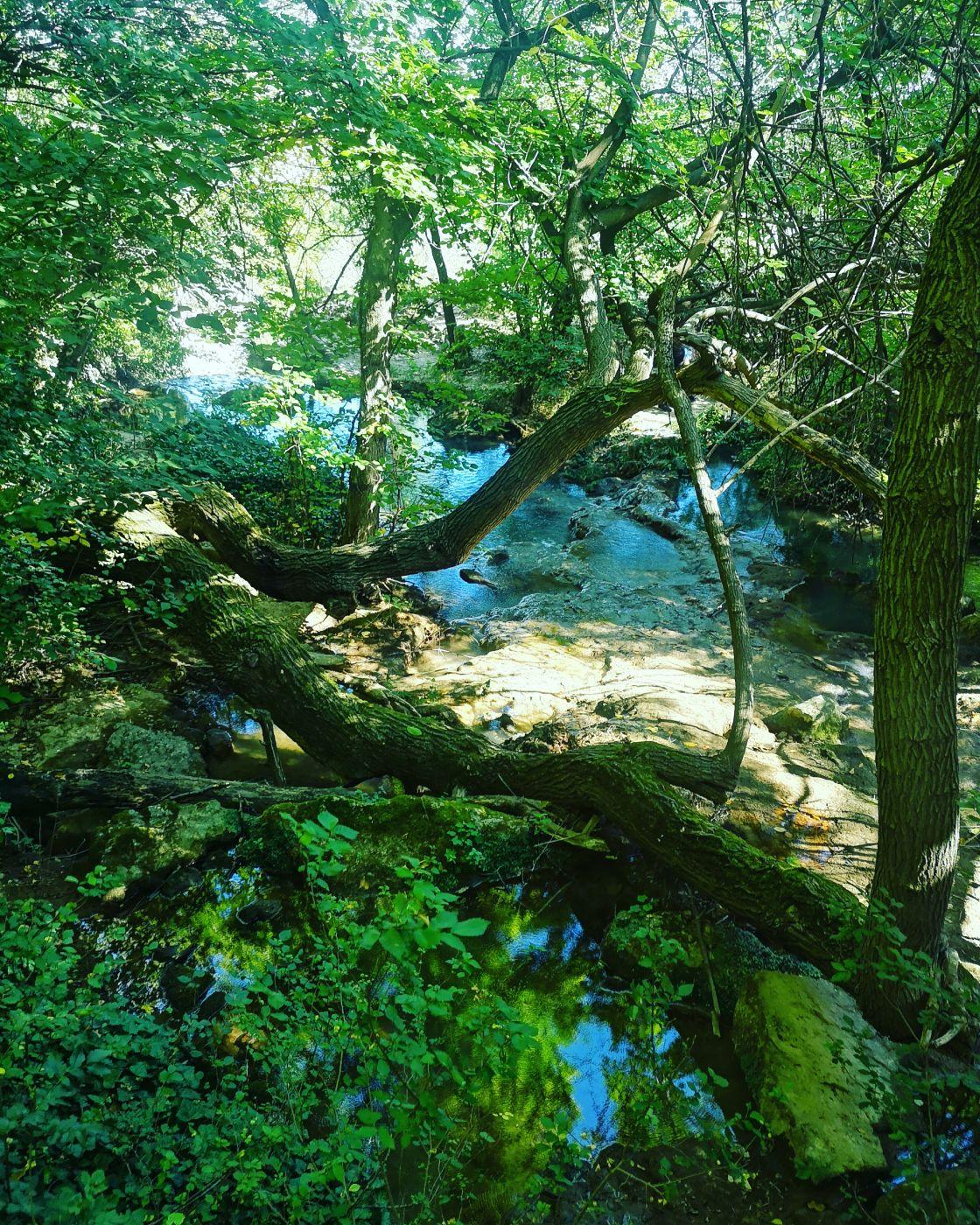 Hotnitsa Waterfall & Canyon, Bulgaria