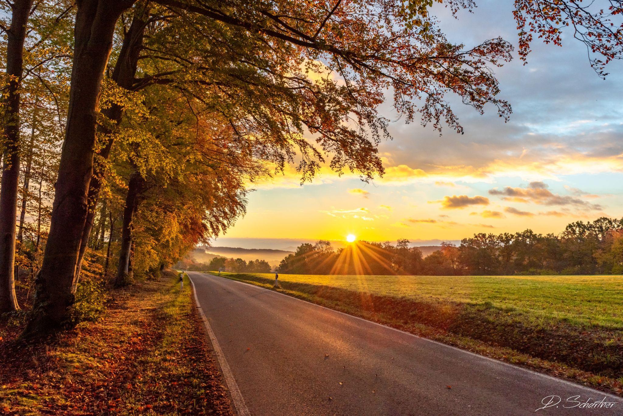 Autumn Sunrise, Germany