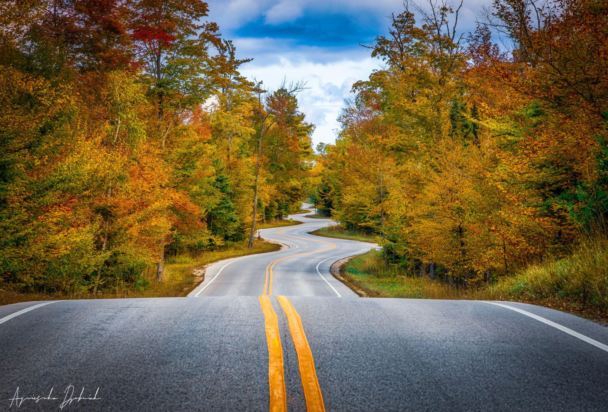 Door County's Curvy Road, Wisconsin, USA