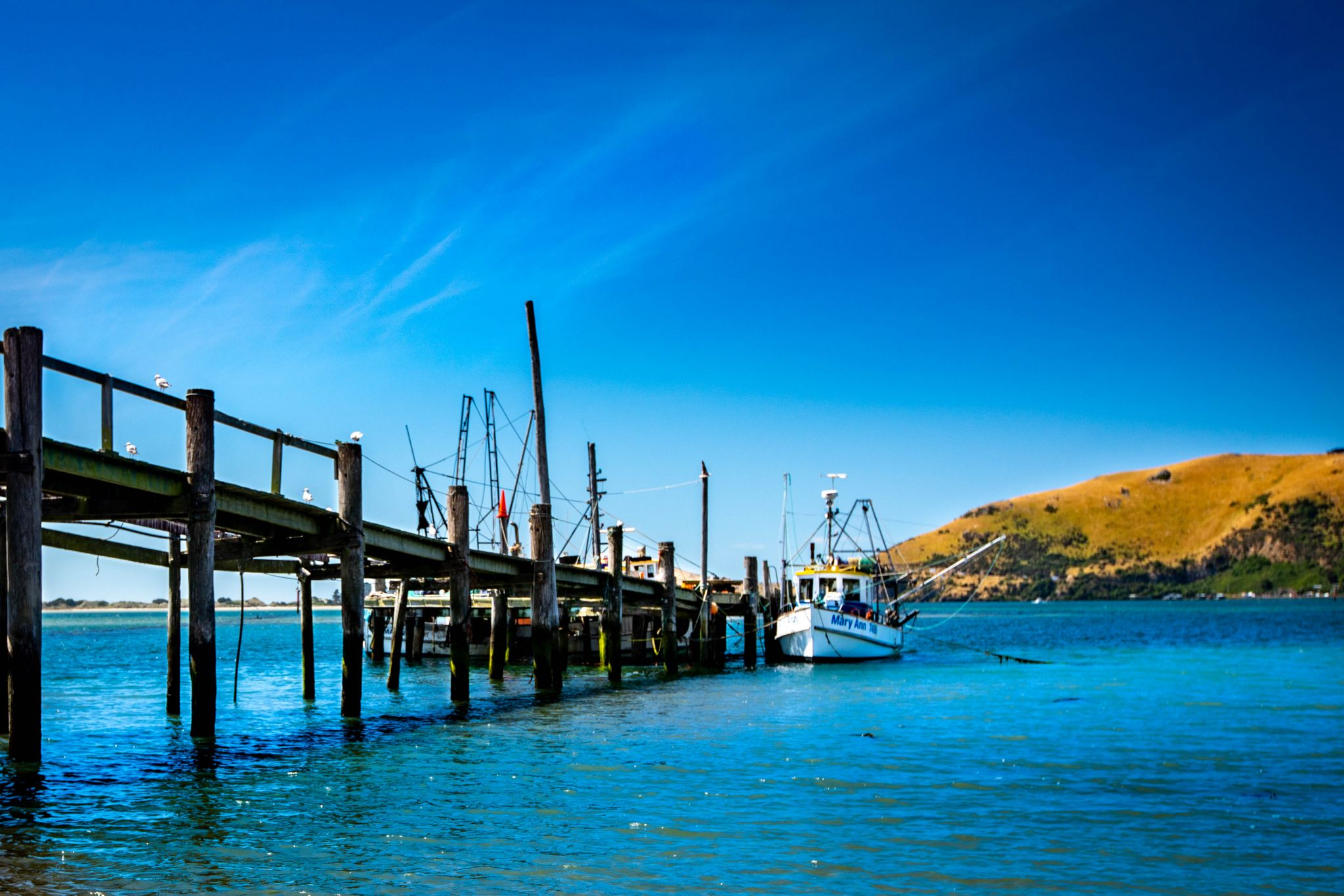 Jetty & fishing boat, Otakou, South Island, New Zealand