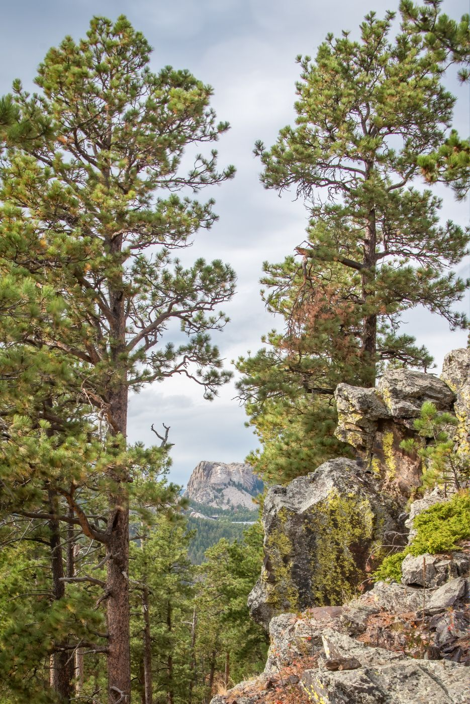 Mount Rushmore, from Norbeck Overlook, USA