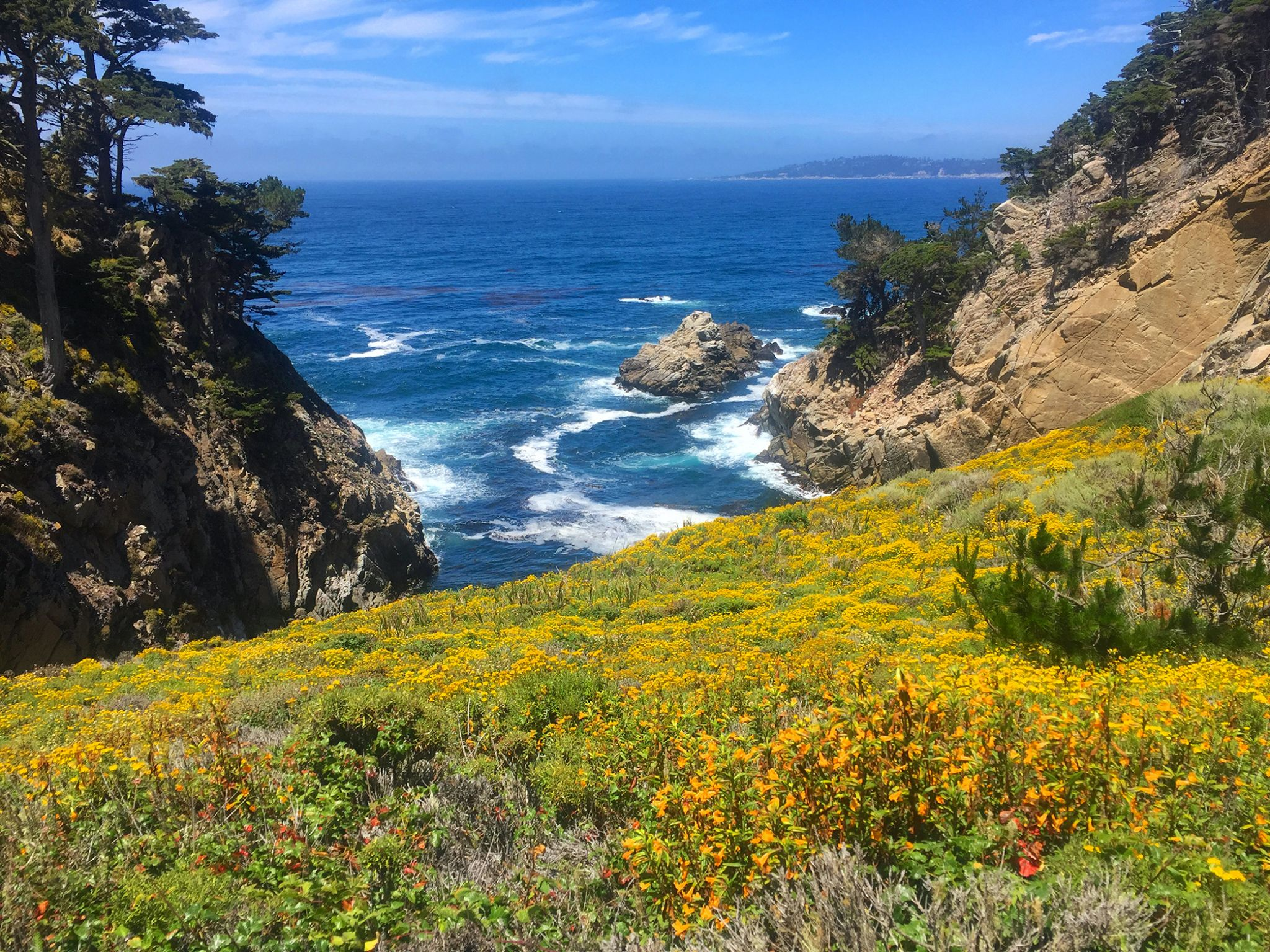 Point Lobos, USA