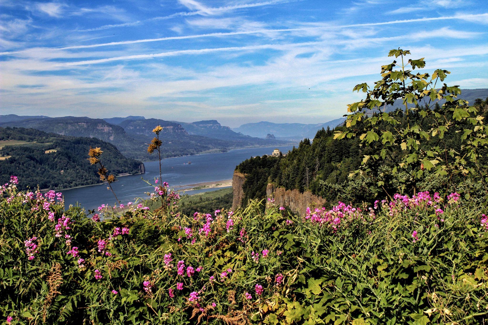 Portland Women's Forum Scenic Viewpoint, USA