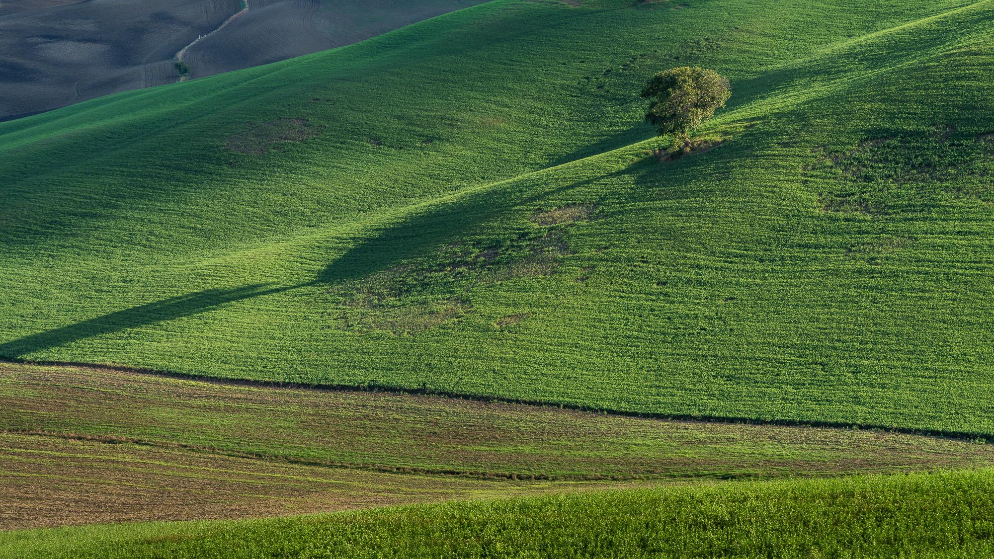 Tuscany Green peace, Italy