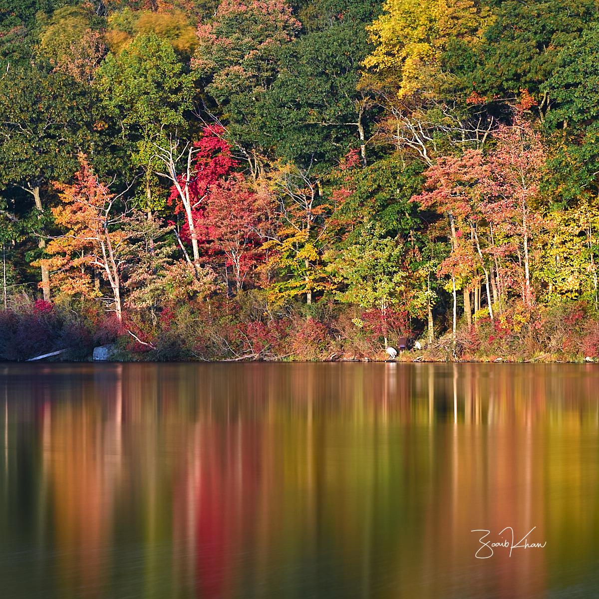 Harriman State Park, NY, USA
