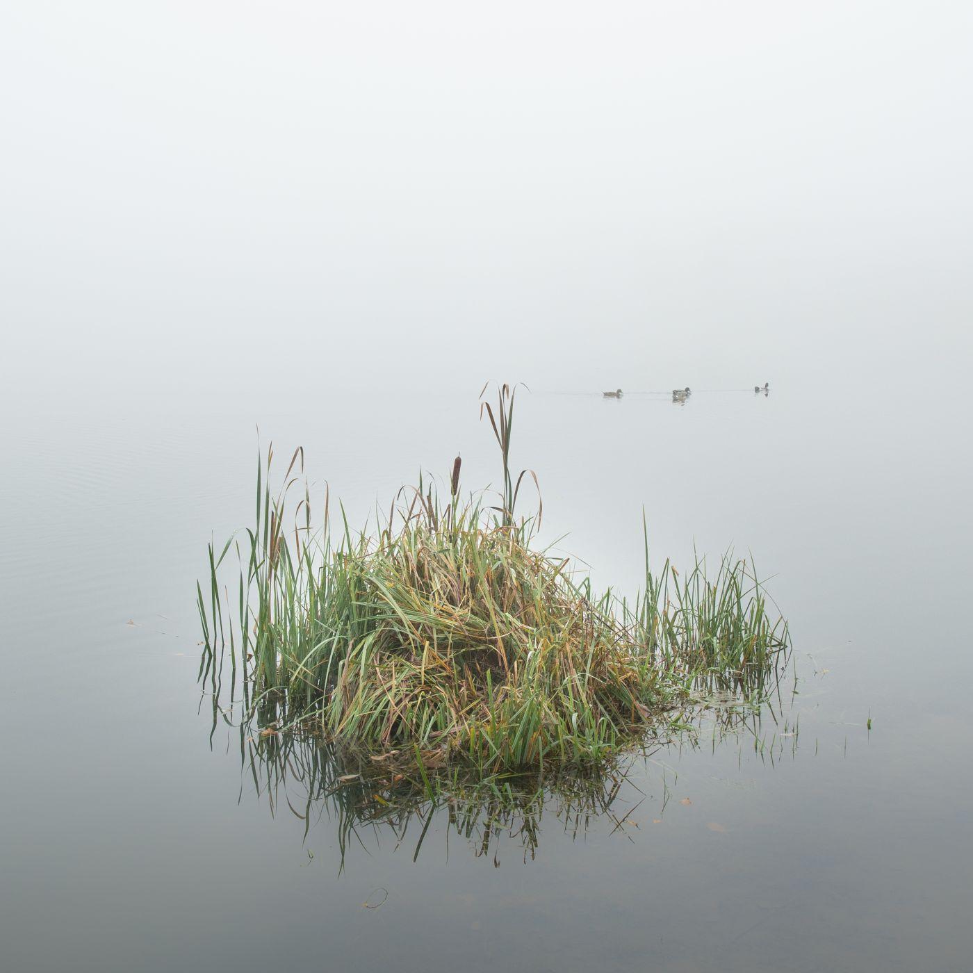 Podebrady Lake, Czechia Czech Republic, Czech Republic