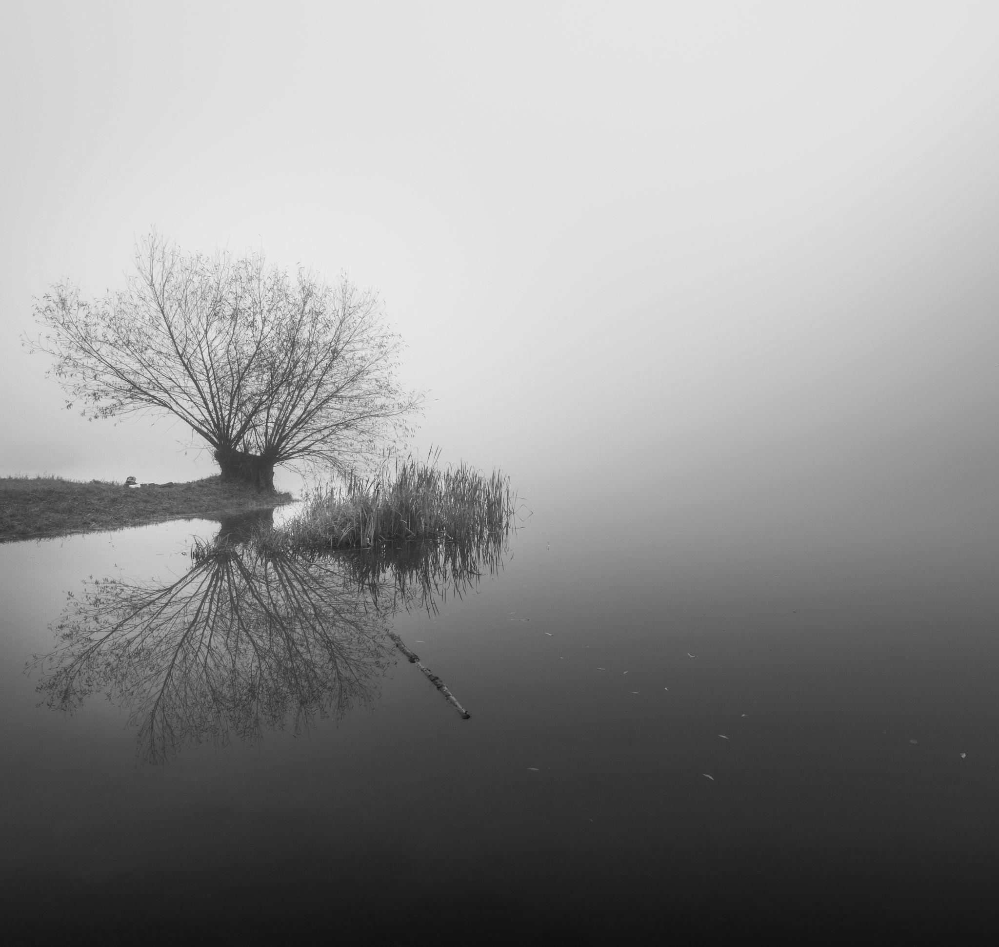 Podebrady Lake, Czechia, Czech Republic