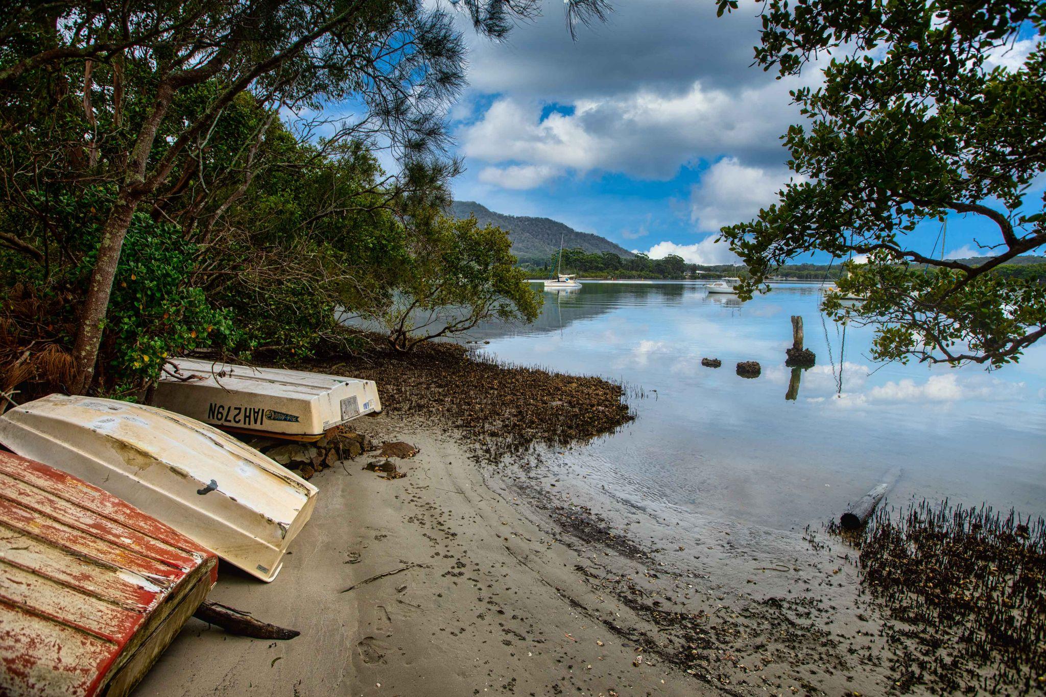 Small Boats & Mangroves Dunbogan New South Wales, Australia