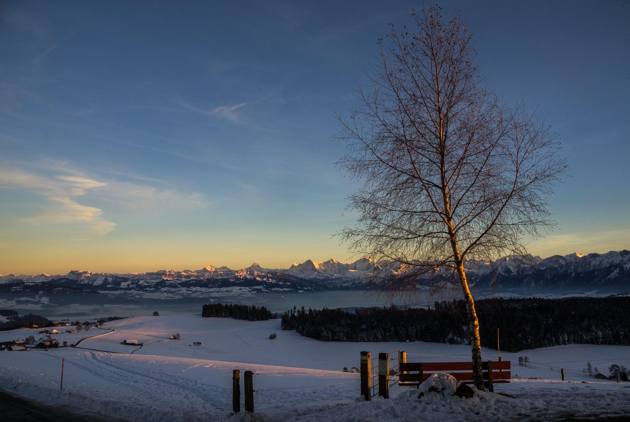 Sunset over the Bernese Alps, Switzerland