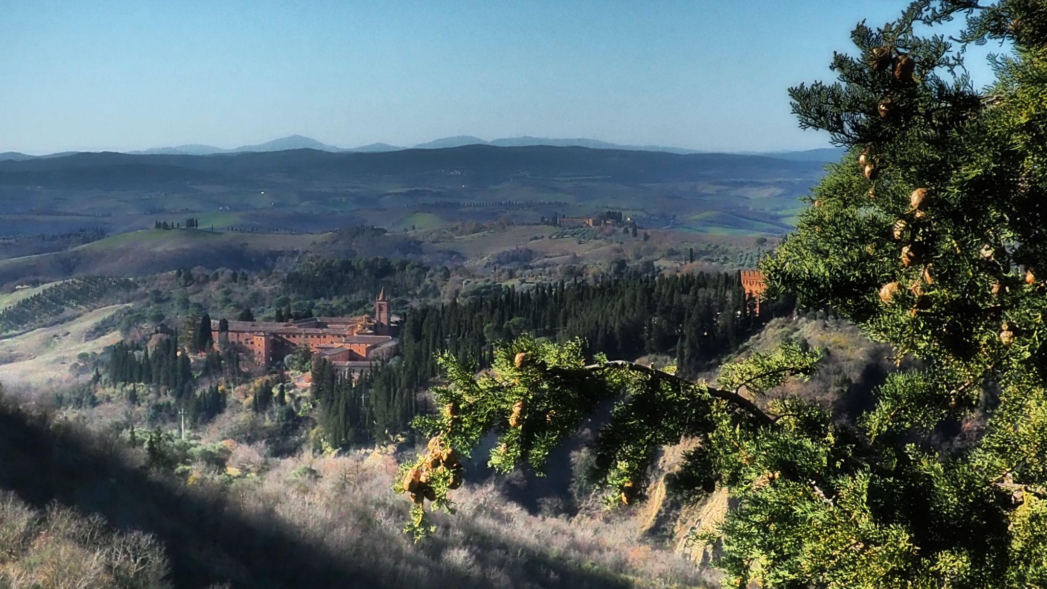 View to Monte Oliveto Maggiore, Italy