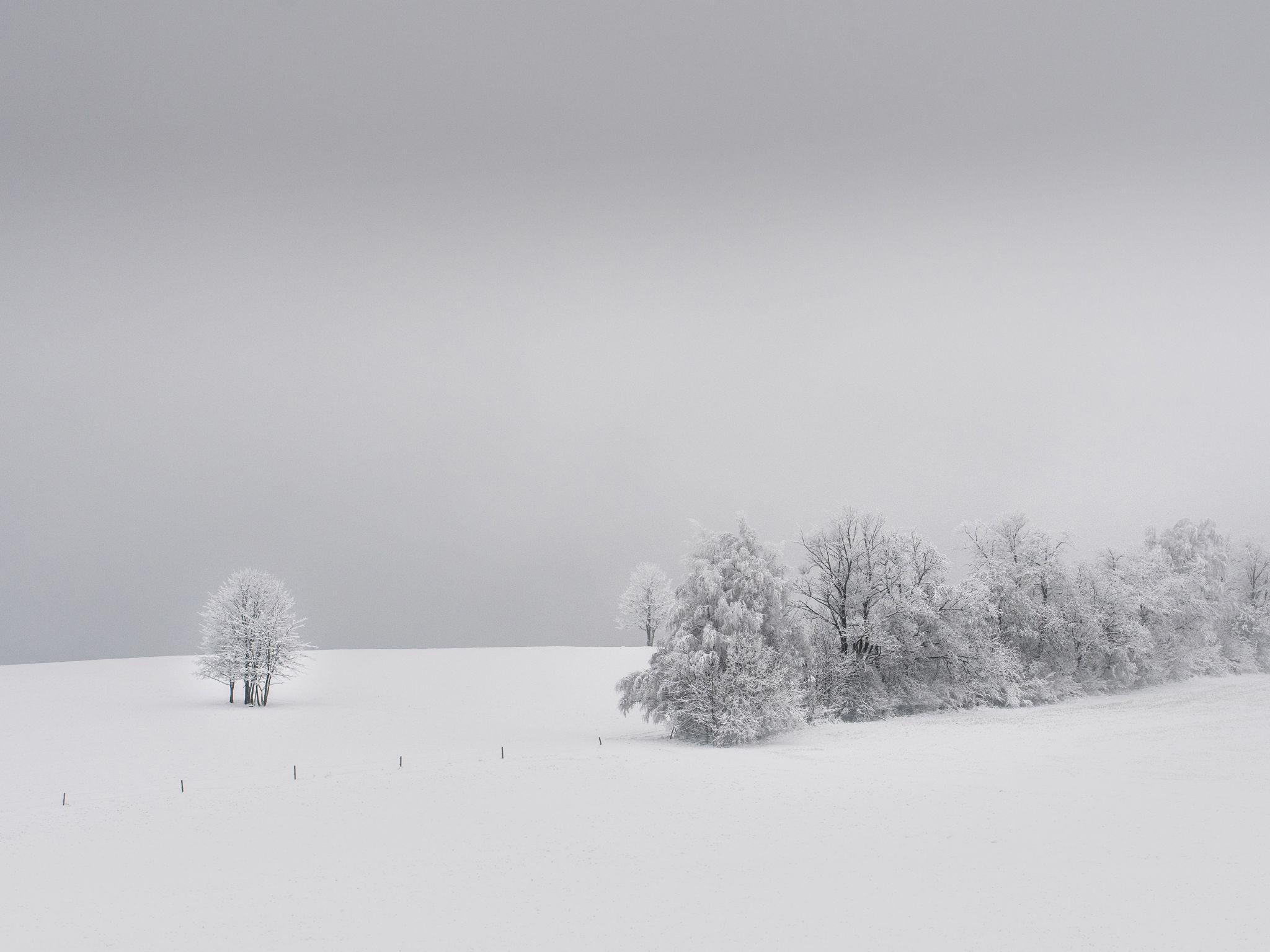 White winter, Czech Republic