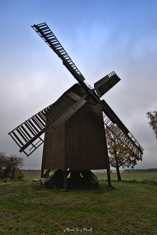 Bockwindmühle Borne, Germany