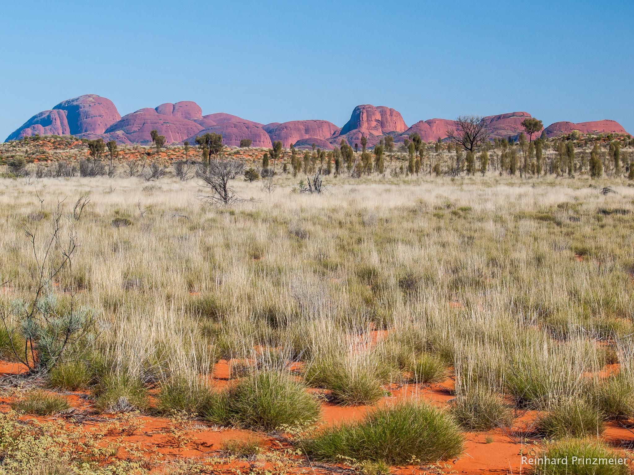 View to Kata Tjuta, Australia