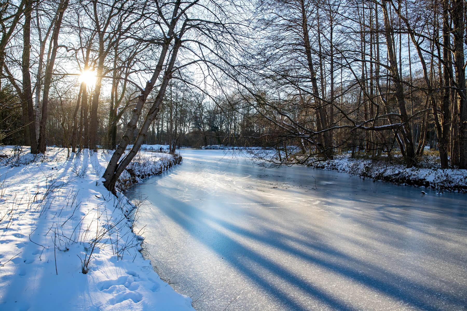 Walsen Ponds in Winter, Germany
