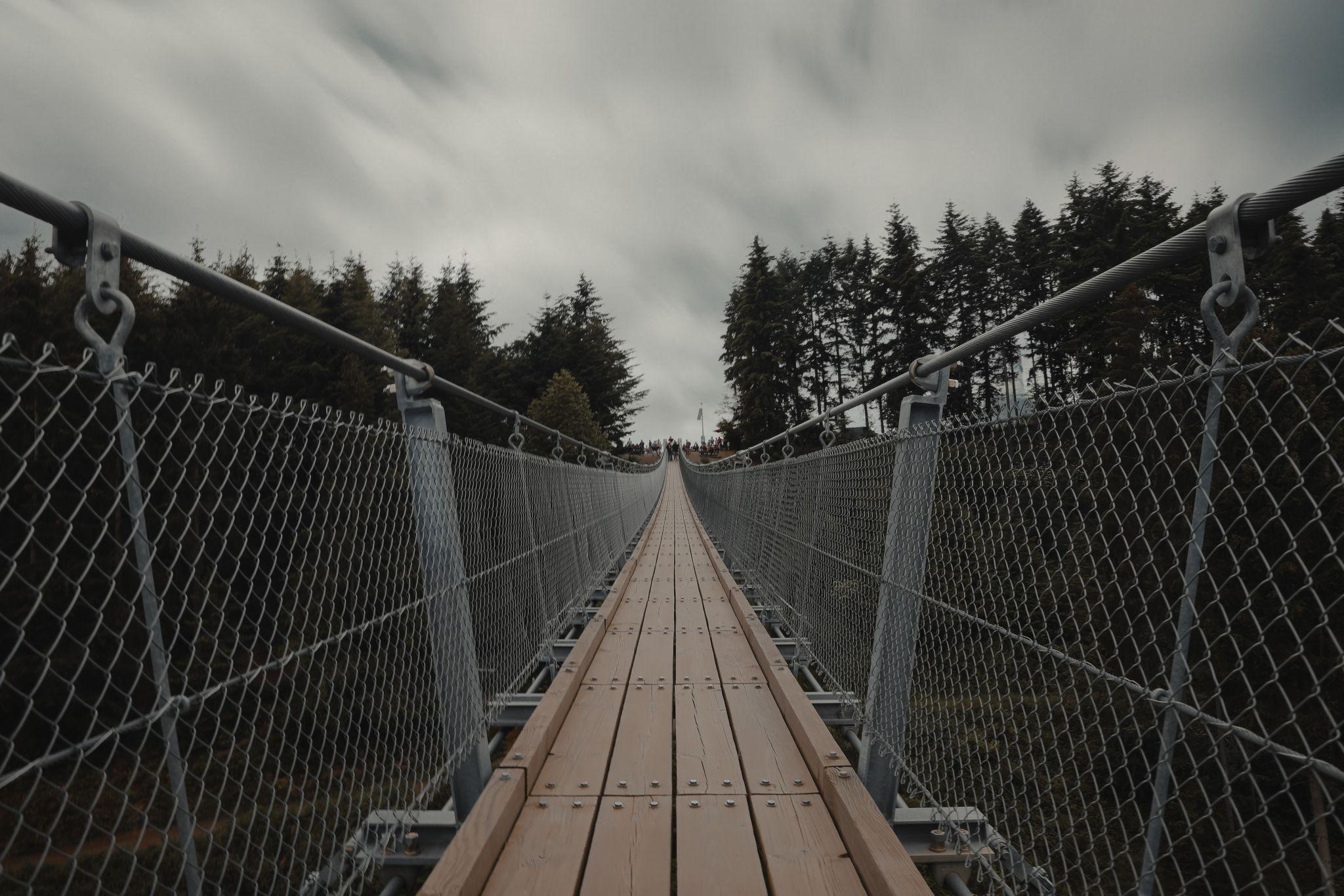 Hängeseilbrücke Geierlay, Germany