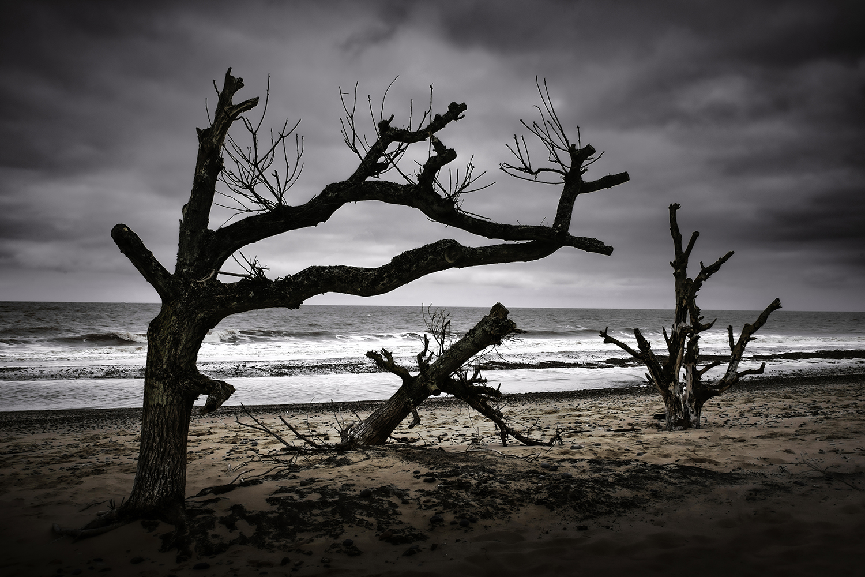 Covehithe Beach, United Kingdom