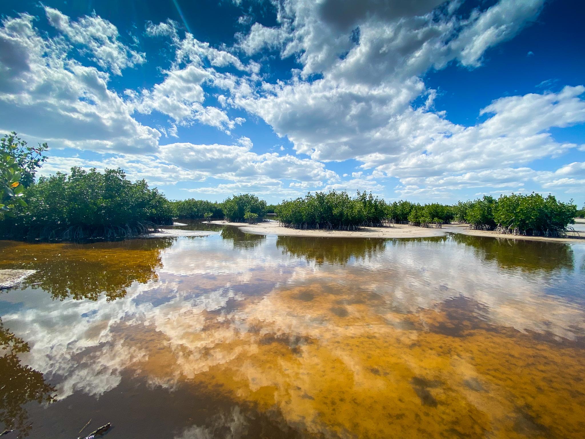 Marco Island - Marsh Trail, USA