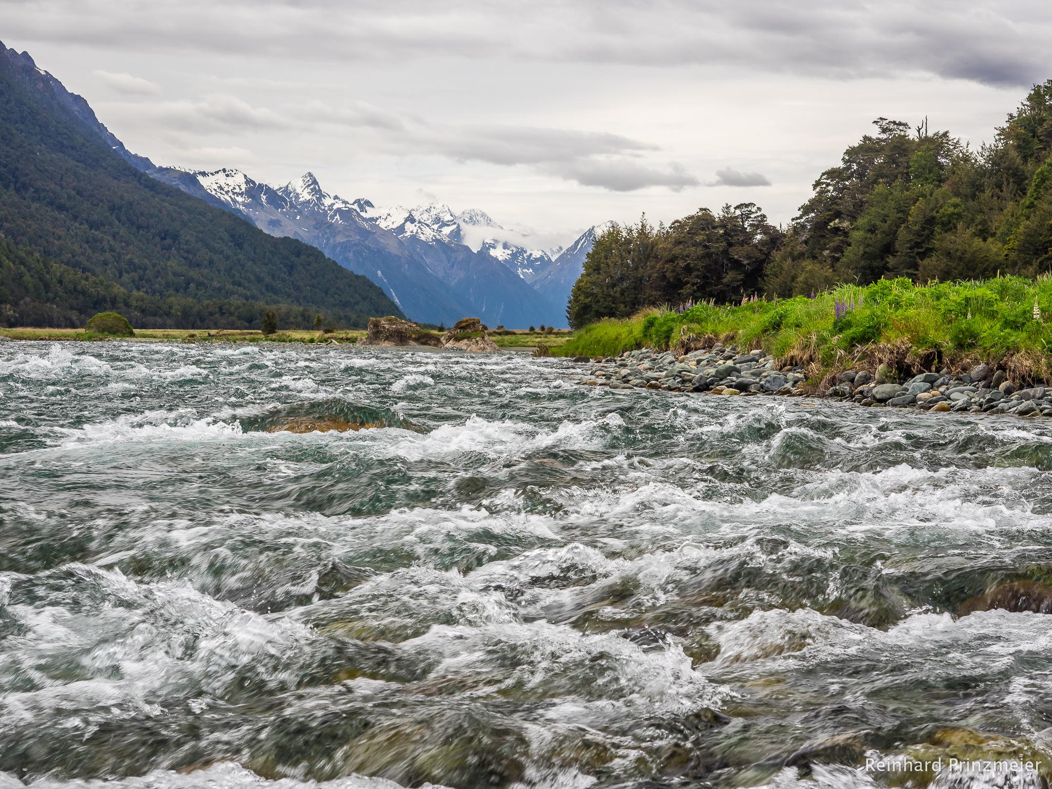 Eglinton River, New Zealand