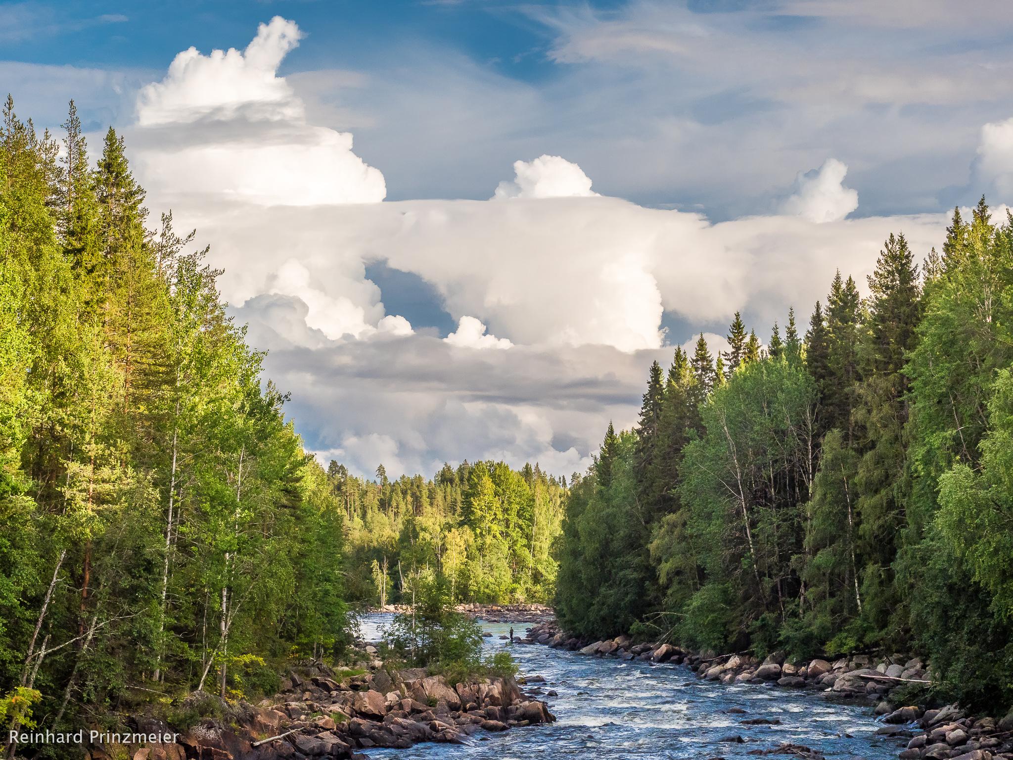Laxfallen, Sweden