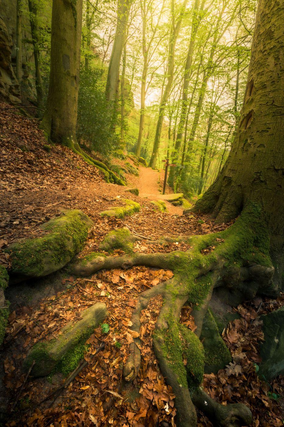 Naturentdeckungspfad, Luxembourg