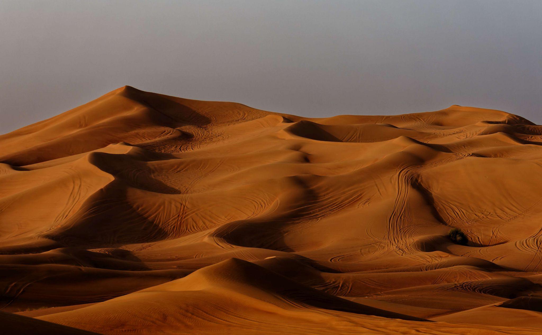 Al Madam - Schardscha, United Arab Emirates