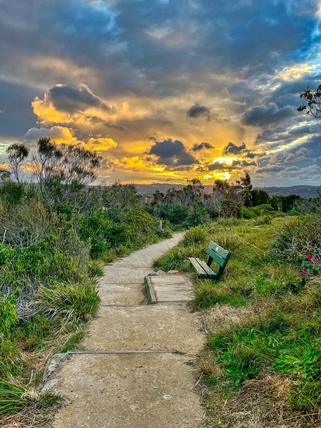 Headland pathway, Mona Vale, Sydney, Australia