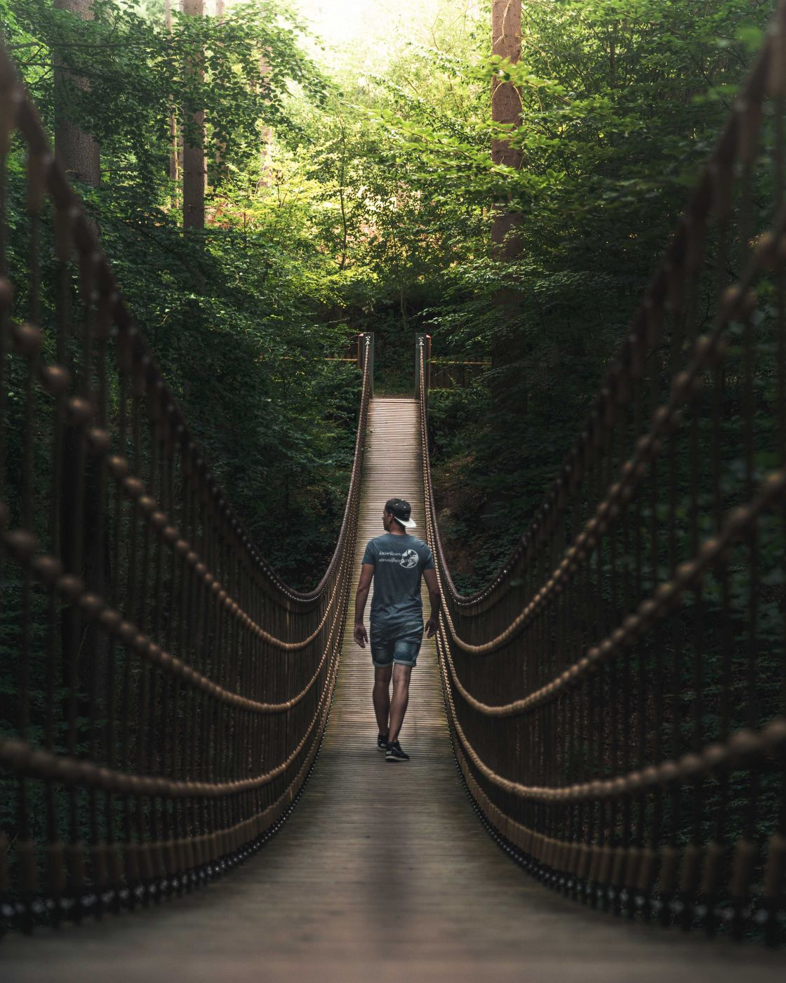 Suspension bridge in the Bingen Forest, Germany