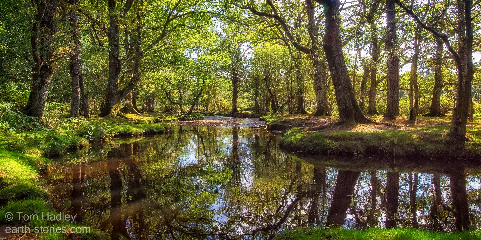Ober Water at Aldridge Hill, United Kingdom