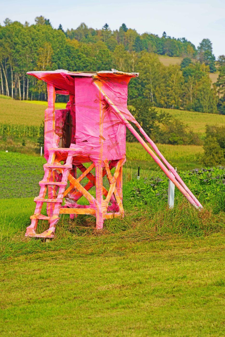 Raised hide in pink, Germany
